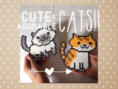 2 in 1 Perler Bead Cat Tutorial.Cute Sitting and Standing Cats!!