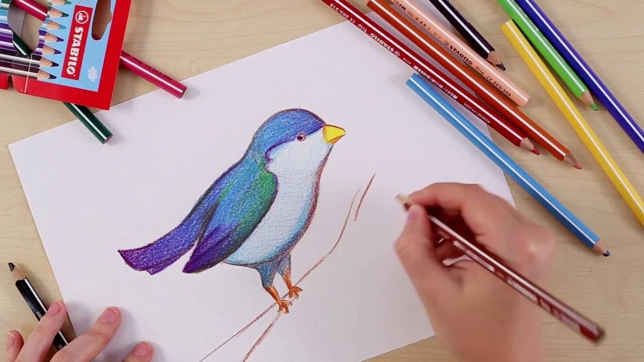 How to draw a bird (STABILO Tutorials, intermediate)