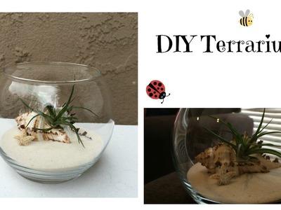 DIY Terrarium Garden - Super Easy!!!