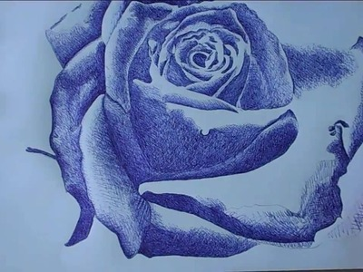How to draw Rose with Ballpoint Pen easy by Tialer Tran