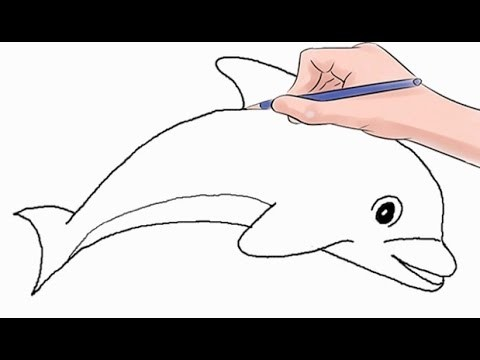 How to Draw a Dolphin Easy Step by Step