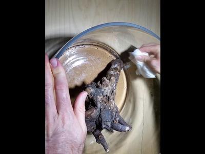 How to Make a Junglejar Cylinder Aquarium