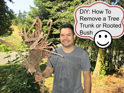 DiY: How to Remove A Tree Trunk or Rooted Bush  | aSimplySimpleLife