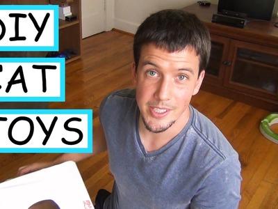 2 DIY Cat Toys   EASY + CHEAP
