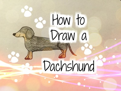 How to Draw a Dachshund