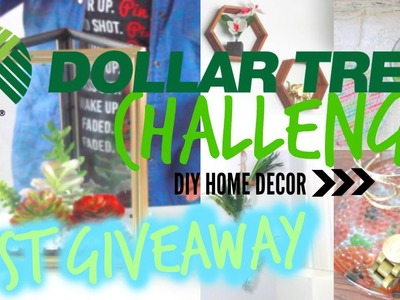 Dollar Tree Challenge |  DIY Home Decor + First GIVEAWAY!