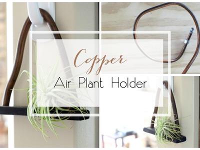 DIY Copper Air Plant Holder