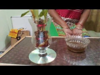 Reuse of plastic bottle,how to use old things of house,DIY of old plastic bottle