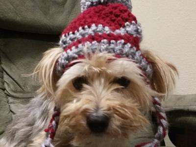 Crochet Hat for Dogs Tutorial