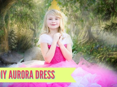 DIY Sleeping Beauty Aurora Dress Costume TUTU