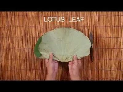 Sakul Intakul HOW-TO ep. 2 'LOTUS SQUARE' Modern Asian