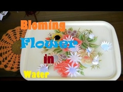 HOW to MAKE Blooming Flower Trick Just Add Water With Help of White Paper
