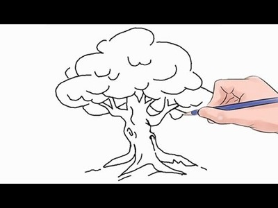How to Draw a Tree Easy Step by Step