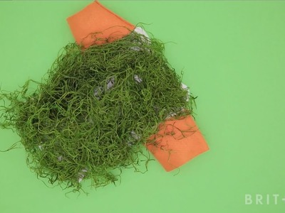 How to DIY a Chia Pet Dog Costume
