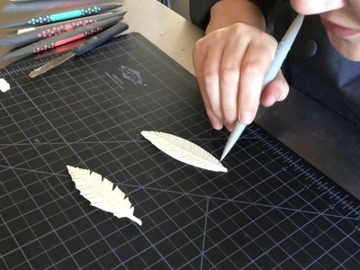 How to Make Chocolate Feathers using Innovative Sugarworks Sugar Shapers