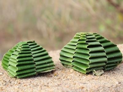 How to make coconut tree leaf using PYRAMID @naturetoys #naturetoys