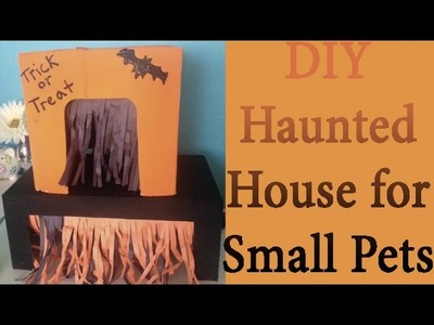 Halloween DIY | Haunted House for Rats, Hamsters, ect.