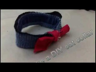 How to make a DIY cat collar (no stitch)
