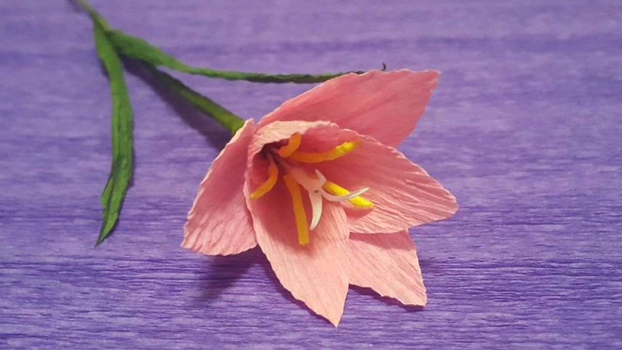 How to Make Pink Rain Lily  Paper Flowers - Flower Making of Crepe Paper - Paper Flower Tutorial