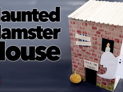 DIY Haunted Hamster House | #SpookSeason2016