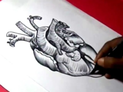 How to HUMAN HEART DRAWING for kids step by step