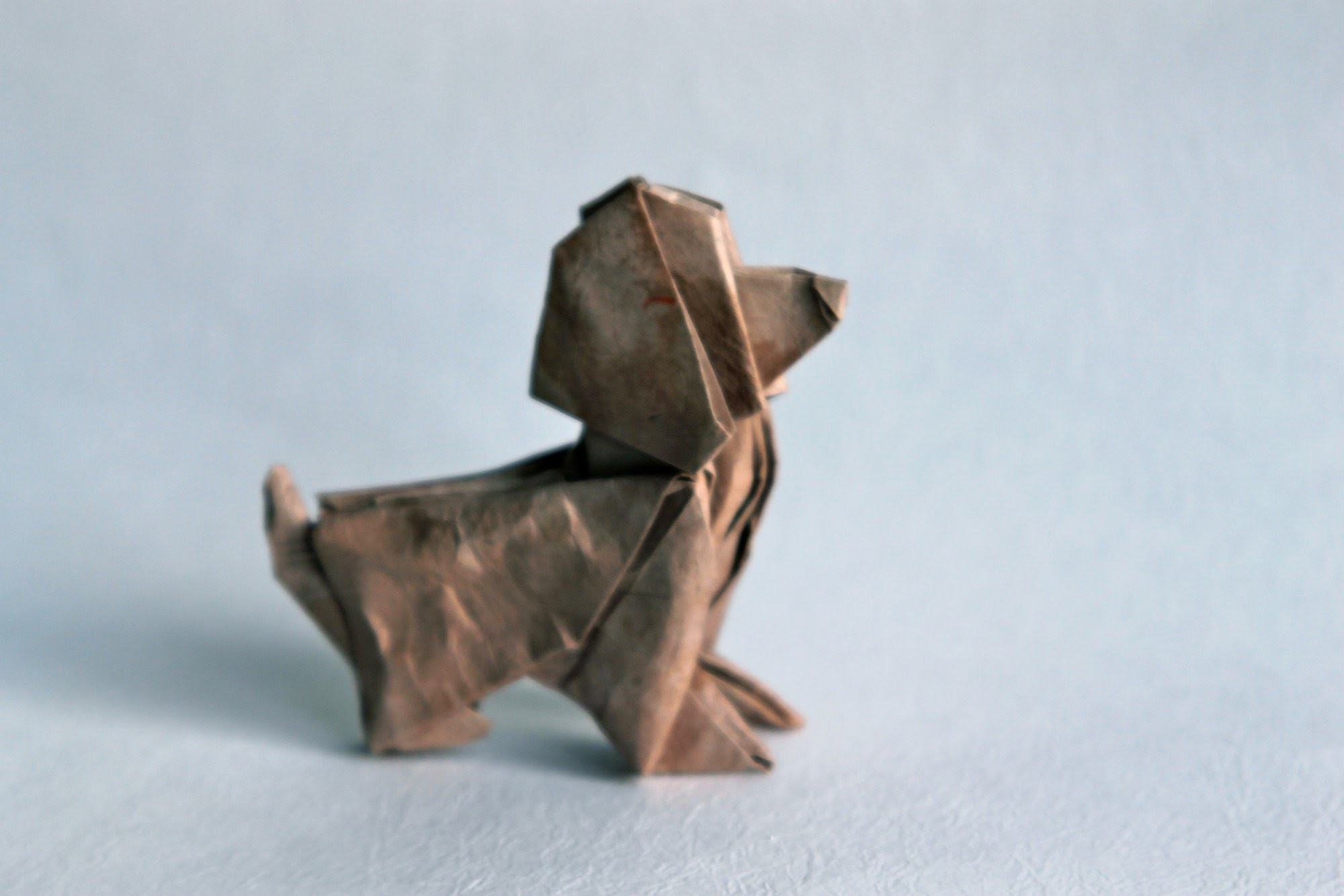 how to make origami fortune teller jeremy shafer