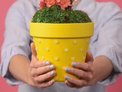 OLD Add a Pop to Your Garden Pots