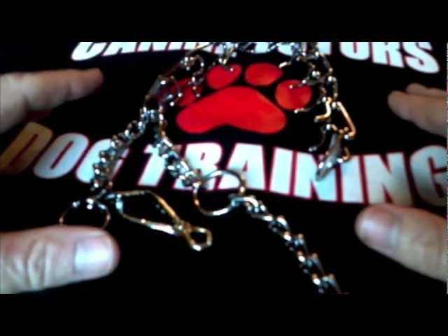 HOW TO PUT A PINCH.PRONG COLLAR ON YOUR DOG San Jose,Ca. 408-455-1503