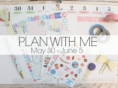 PLAN WITH ME l Happy Planner