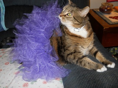 How To Make A Tulle Tutu For Your Pet