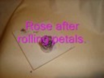 Easy 3D Polymer Clay Rose