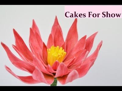 Making Sugar Lotus Flower