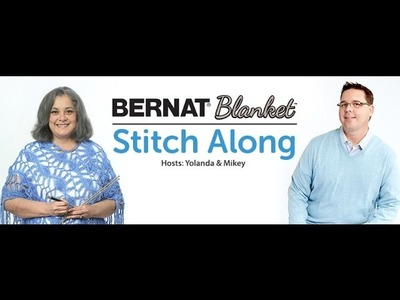 Bernat  Stitch Along :  Week 3