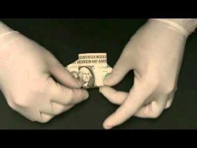 Dollar Bill Dog 2010