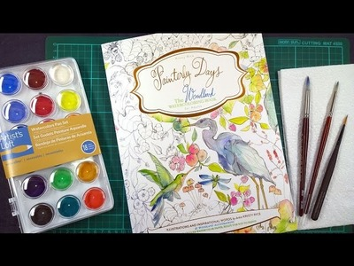 Colouring Book Review: Painterly Days Plus Tips on How to use Watercolours.