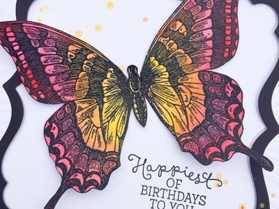 Tim Holtz Distress Crayons & Stampin Up Swallowtail Butterfly Colouring Demonstration.