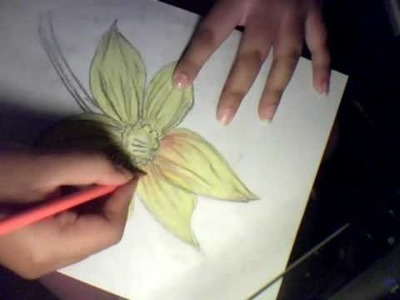 How To Draw a Flower (Daffodils)