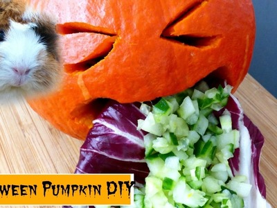 Halloween Vomiting Pumpkin Veggie DIY for Guinea Pigs