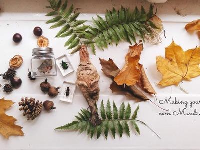 Harry Potter. Mandrake DIY