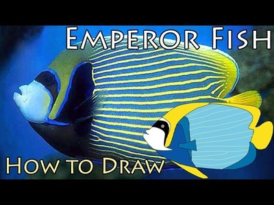Emperor Fish - How to Draw Emperor angel fish - Fish Drawing