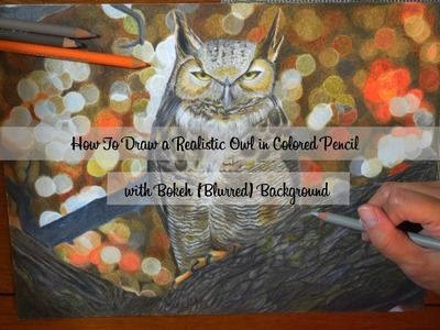 How to Draw a Realistic Owl in Colored Pencil with Bokeh (Blurred) Background
