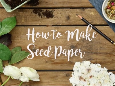 How to: Seed Paper | Visual Country