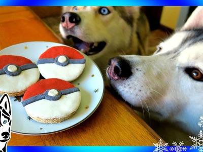 DIY POKEBALL DOG TREATS | Snow Dogs Snacks 59 | DIY Dog Treats