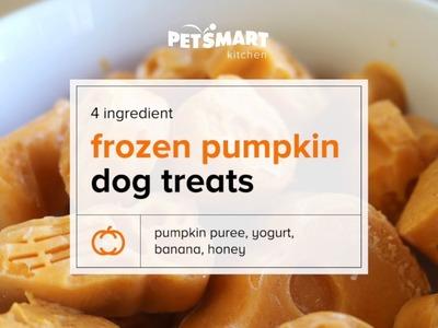 PetSmart Kitchen: DIY Frozen Pumpkin Dog Treats