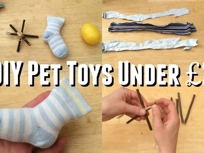 DIY Pet Toys Under £2 |♡Imy'sAnimals♡