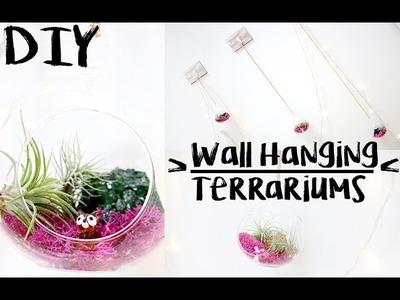 DIY: Wall Hanging Terrariums