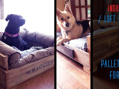 30 DIY Pallet Beds For Dogs