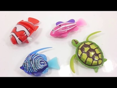 How To Make Robotic Turtle Fish Colors Orbeez Aquarium DIY, Nursery Rhymes For Baby And Kids Song