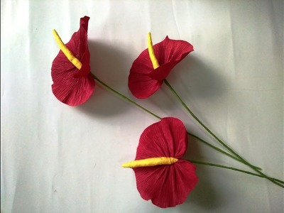 DIY   How to make paper flower - Anthuriums