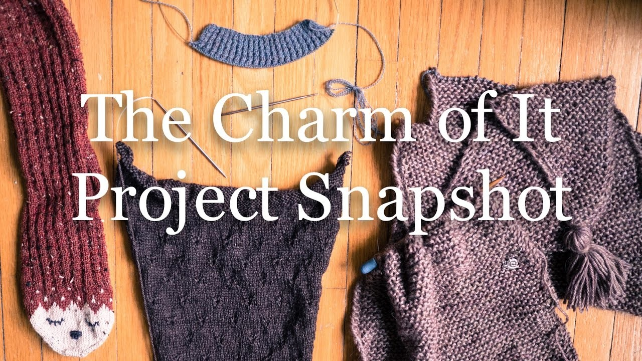 The Charm of It Knitting Podcast 34: Project Snapshot of Nov 25th
